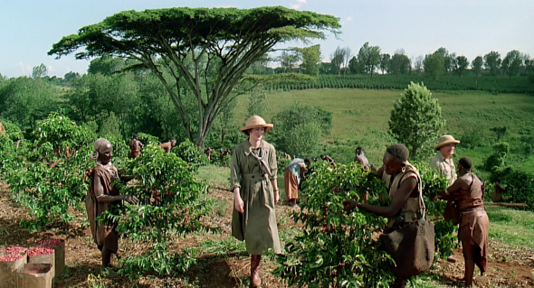 out of africa style (11)