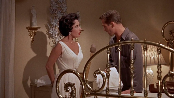 elizabeth taylor's style cat on a hot tin roof (12)