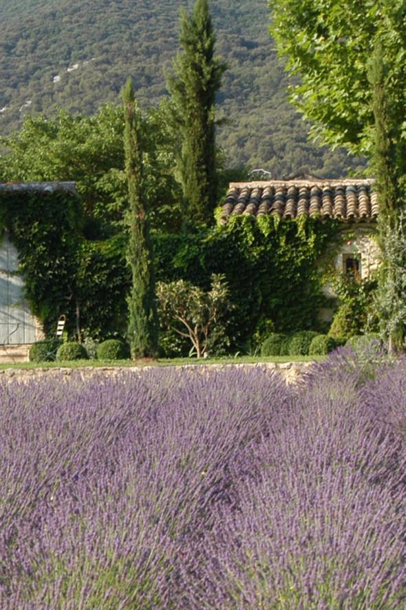 Villa Grenache La Bastide de Marie Provence (2)