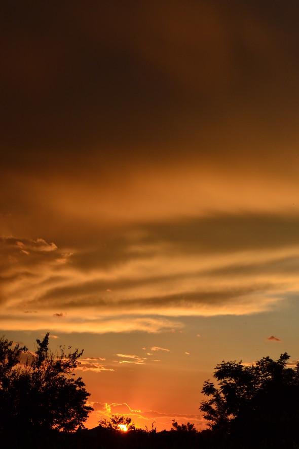 classiq-at sunset-2