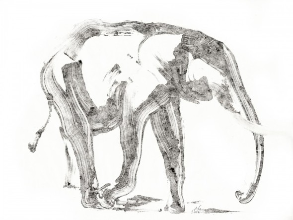 Aurore de la Morinerie illustration 1