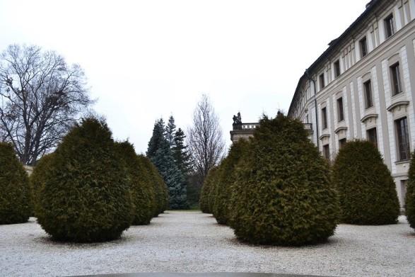 Classiq-Prague in January-1
