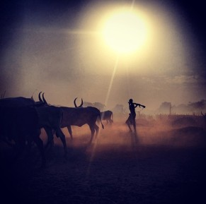 Catle Camp at Sunrise South Sudan by Treana Peake