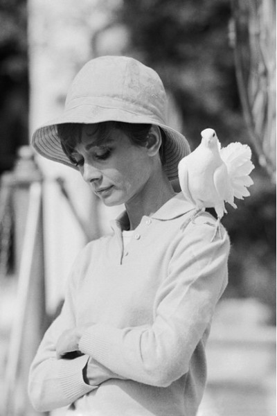 Audrey Hepburn by Terry O'Neill-2