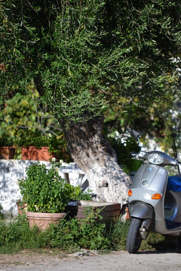 Classiq-Greece