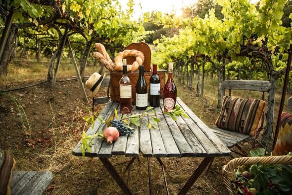 Vineyard Dinner-Napa Valley-Carolyn Corley Burgess