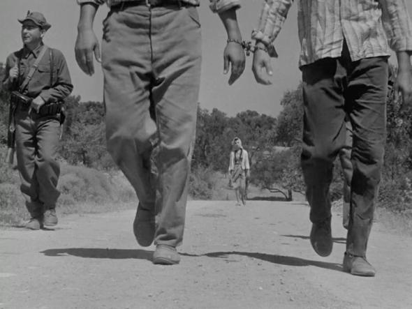 Dry Summer 1963