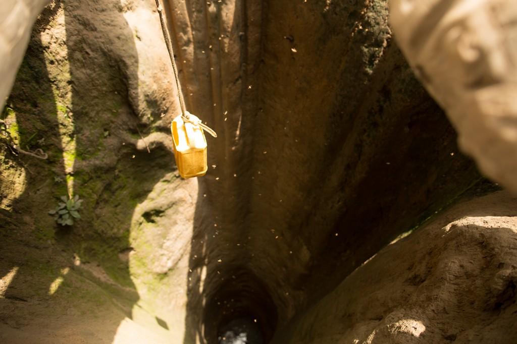 Scarves forester Obakki foundation
