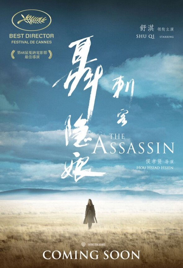 The Assassin 2015