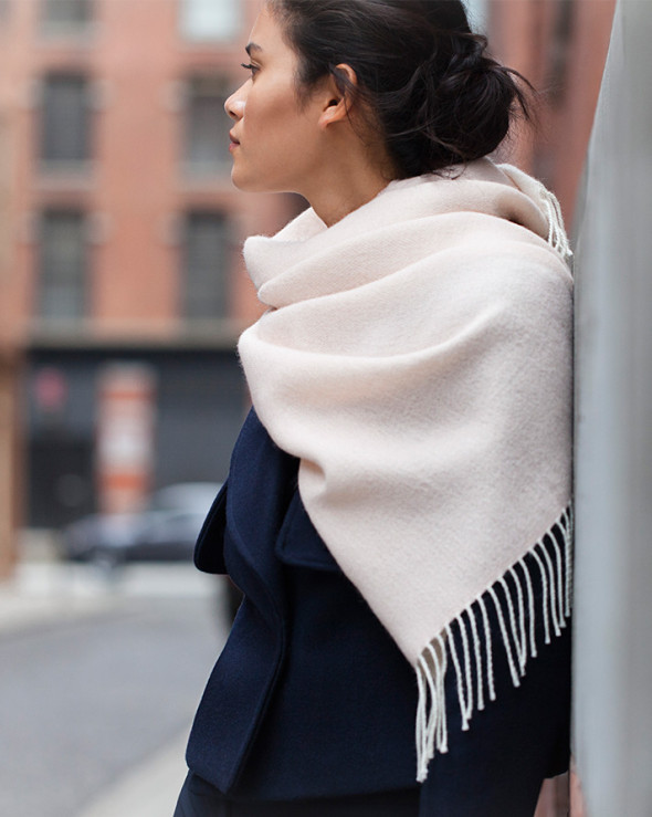 The scarf Cuyana fall 2016